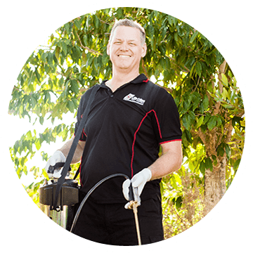 get rid of pests termite inspection pest treatment control sunshine coast